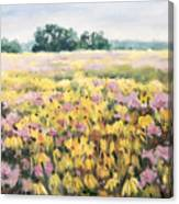 Nygren Wetlands Canvas Print
