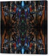 Oa-4629 Canvas Print