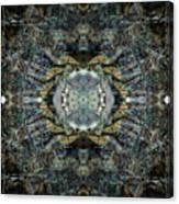 Oa-4990 Canvas Print