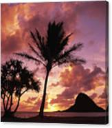 Oahu, Mokolii Island Canvas Print