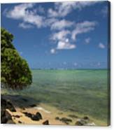 Oahu's East Coast 5 Canvas Print