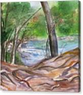 Oak Creek In Sedona Canvas Print
