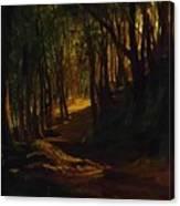 Oak Grove At San Terenzo Canvas Print