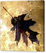 Oak Leaf Underwater Canvas Print