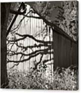 Oak Shadows On A Barn Canvas Print