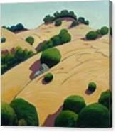 Oak Topped Canvas Print