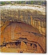 Oak Tree House - Mesa Verde Canvas Print