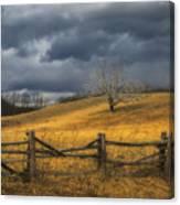 Oak Tree In Storm Canvas Print
