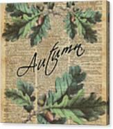 Oak Tree Leaves And Acorns, Autumn Dictionary Art Canvas Print
