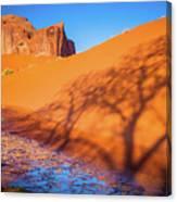 Oasis Tree Shadow Canvas Print