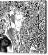 Oberon Canvas Print
