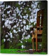 Observation Chair Canvas Print