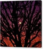 Ocala Moonrise Canvas Print