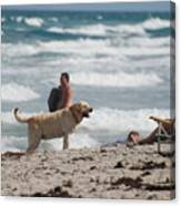 Ocean Dog Canvas Print