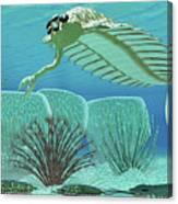 Ocean Opabinia Canvas Print