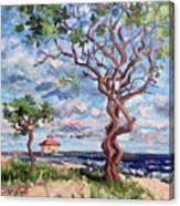 Ocean Ridge 2017 Canvas Print