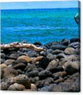 Ocean Watch Canvas Print