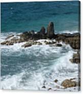 Oceanic Beauty Canvas Print