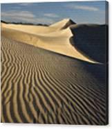 Oceano Dunes Canvas Print
