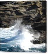 Oceans Canvas Print