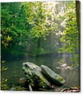 Oconaluftee River. Canvas Print