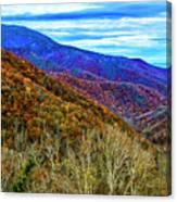 October Days Canvas Print