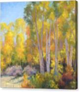October Delight Canvas Print