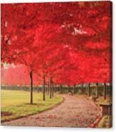 October Dream Canvas Print