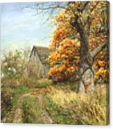 October Glory Canvas Print