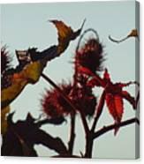 October Light Canvas Print