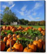 October Postcard  Canvas Print