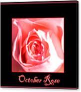 October Rose Canvas Print