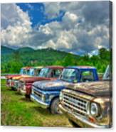Odd Man Out Fords And Friend  Canvas Print