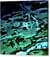 Oddysea 1 Canvas Print