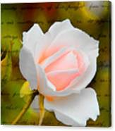 Ode To A Rose Canvas Print