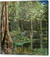 Ode To Robert Butler Canvas Print