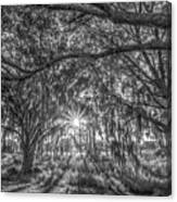 Odessa Sunrise -black And White Canvas Print