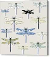 Odonata Canvas Print