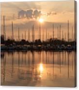 Of Yachts And Cormorants - A Golden Marina Morning Canvas Print