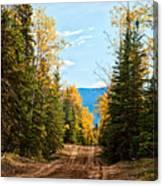 Off The Alaska Highway Canvas Print