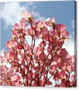 Office Art Prints Blue Sky Pink Dogwood Flowering 7 Giclee Prints Baslee Troutman Canvas Print