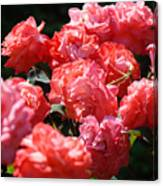Office Art Roses Pink Rose Flowers Floral Garden Canvas Print
