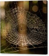 Oh What Tangled Webs.... Canvas Print