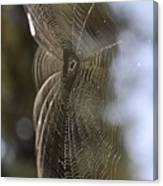 Oh What Webs We Weave Canvas Print
