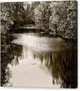 Ohio Autumn Bw Canvas Print