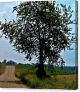 Ohio Back Roads Canvas Print