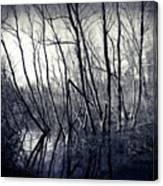 Ohio Metro Pond Canvas Print