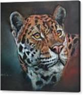 Oil Painting Jaguar Canvas Print