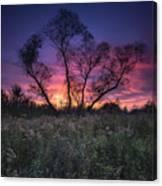 Ojibway Sunset Canvas Print