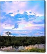 Okavango Sundowners Canvas Print